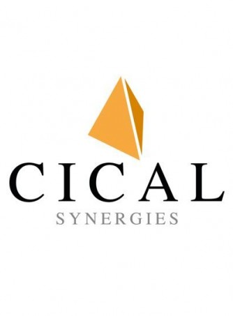 CICAL SYNERGIES